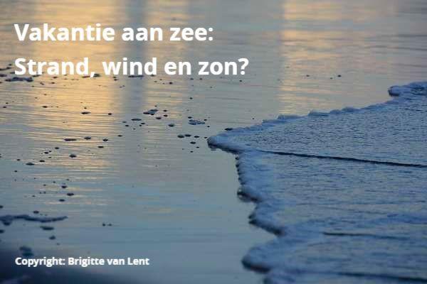 Copyright Brigitte van Lent
